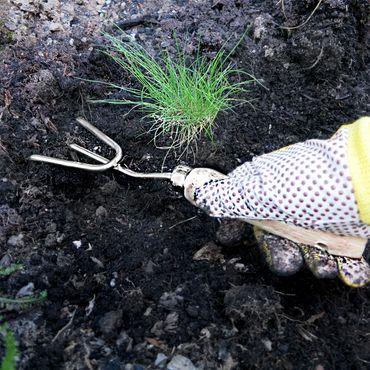 Grüntek Kleingrubber Handkultivator 30x8,5 cm Grubber aus Edelstahl mit Holzgriff aus Buchenholz  – Bild 7