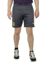 PUMA Borussia Dortmund BVB Training Shorts Kids Hose Kinderhose 745849 02
