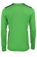 Puma TSG 1899 Hoffenheim GK Shirt Longsleeve Herren Torwart