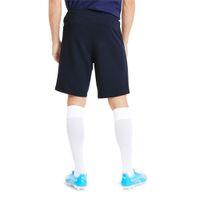 PUMA Herren teamGOAL 23 Casuals Shorts Trainingshose 656581 Blau