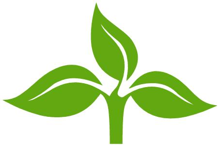 plantoCAPS pharm