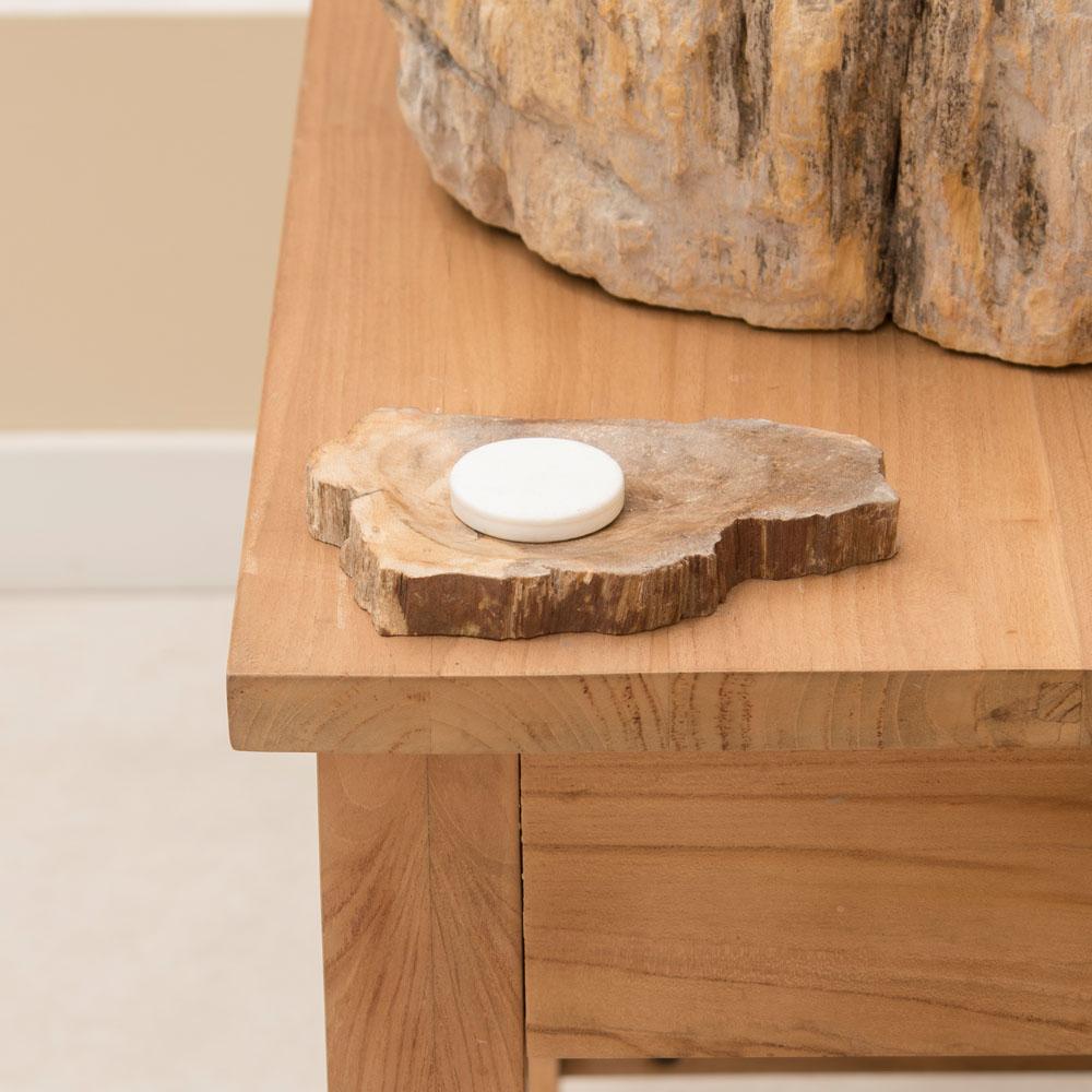 Schale / Seifenschale aus fossilem Holz 12x10x5 cm poliert