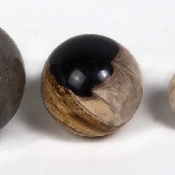 WOHNFREUDEN 3er Set fossile Kugeln ca 4 cm poliert versteinertes Holz Dekokugeln