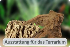 Ausstattung für das Terrarium
