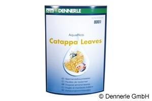 Dennerle Catappa Leaves, Seemandelbaumblätter, 10 Stück – Bild 2