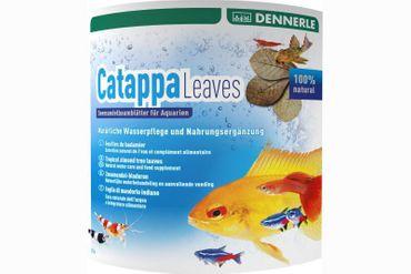 Dennerle Catappa Leaves, Seemandelbaumblätter, 10 Stück