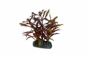 Hobby Nesaea, 7 cm