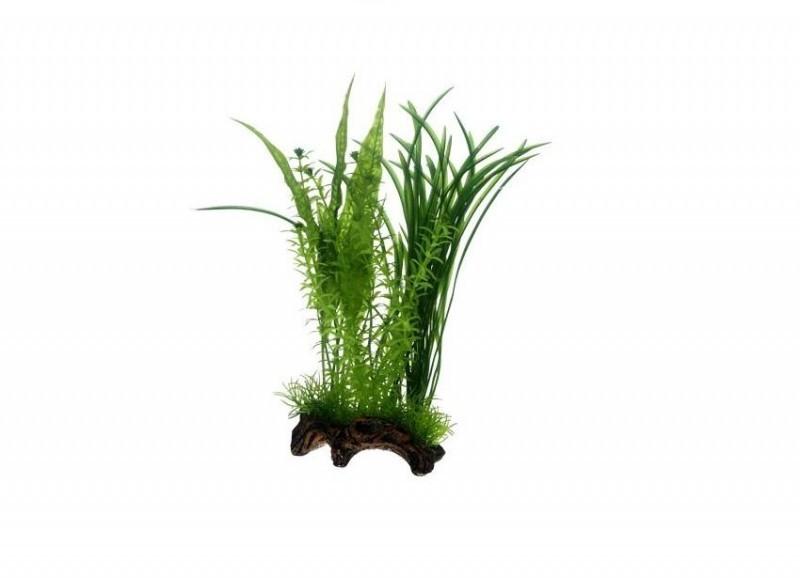 Hobby Flora Root 1, 30 cm