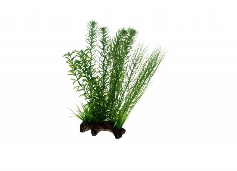 Hobby Flora Root 2, 30 cm