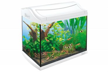 Tetra AquaArt Shrimps Aquarium-Komplett-Set 20 L weiß