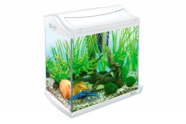 Tetra AquaArt Crayfish Aquarium-Komplett-Set 30 L weiß