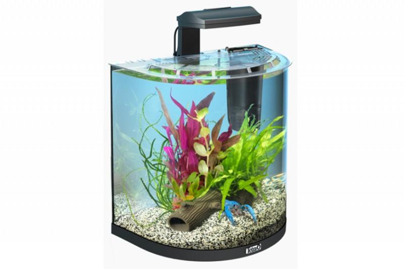 tetra aquaart explorer line aquarium set 30l kaufen. Black Bedroom Furniture Sets. Home Design Ideas