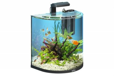 Tetra AquaArt Explorer Line Aquarium Set 60 L