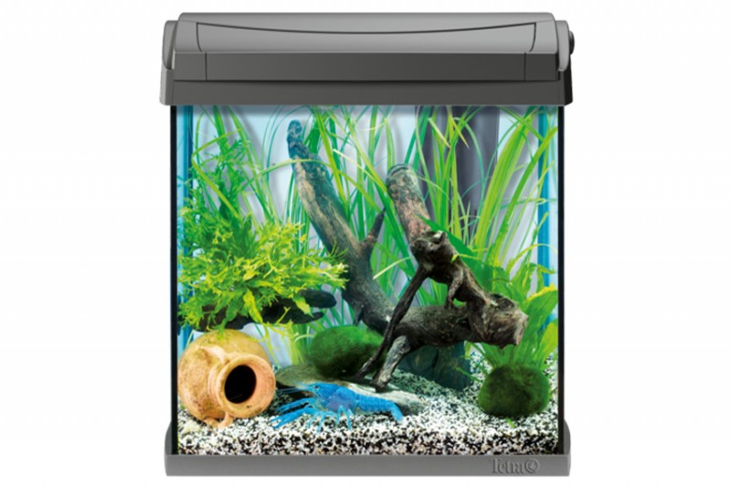 tetra aquaart led aquarium 30 l crayfish aquarien schr nke nano aquarien. Black Bedroom Furniture Sets. Home Design Ideas