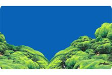 Hobby Fotorückwandzuschnitt Spring/Moss, 100 cm x 50 cm – Bild 2