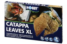 Hobby Catappa Leaves XL, Seemandelbaumblätter, 12 St.