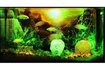 aquarium deko online kaufen aquarium dekoration bestellen 4. Black Bedroom Furniture Sets. Home Design Ideas