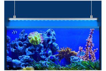 EHEIM powerLED+ marine actinic, 48,7 cm, 13 W, LED Stripe inkl. Reflektor – Bild 4