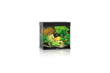 Juwel Lido Aquarium 120 LED, schwarz