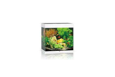 Juwel Lido Aquarium 120 LED, weiß