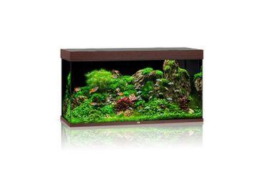 Juwel Aquarium Rio 350 LED, dunkles Holz