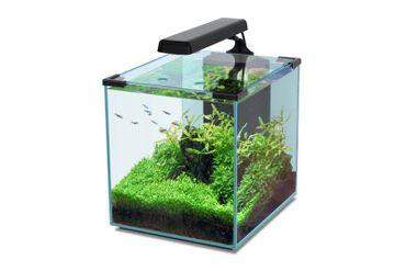 Aquatlantis Aquarienset Nano Cubic 30 LED, schwarz