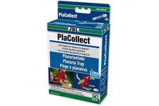 JBL PlaCollect, Planarien-Falle – Bild 1