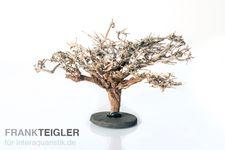 Aquahobby Mini-Bäumchen, 20-25 cm – Bild 1