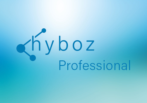 hyboz Desinfektionsgeräte Professional Collection