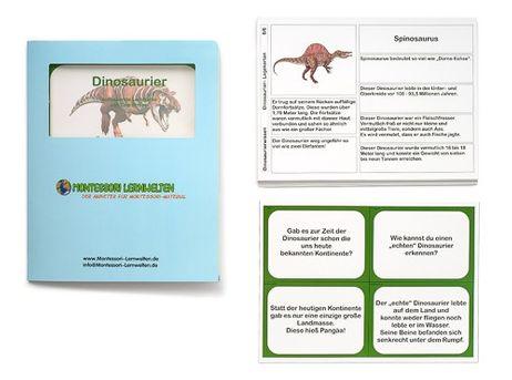 Lernkartei - Die Dinosaurier