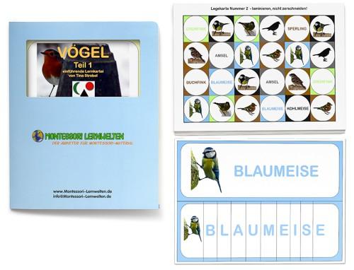 Einführende Lernkartei - Vögel
