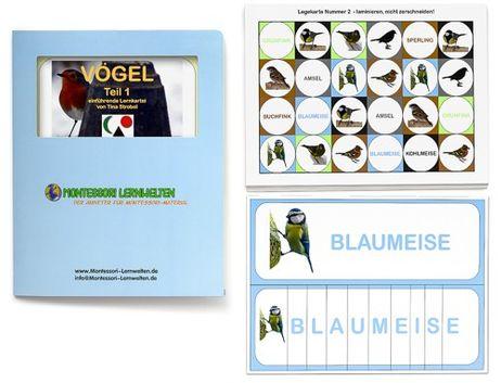 Einführende Lernkartei - Vögel Teil 1 und 2