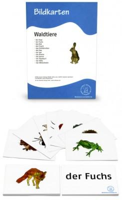 12 Bildkarten - Waldtiere