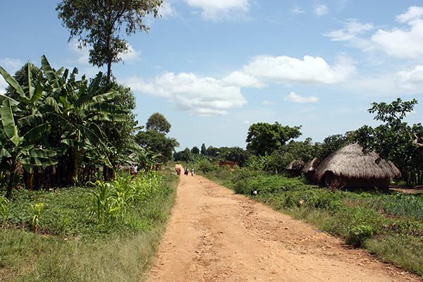 Uganda Dorfumfeld