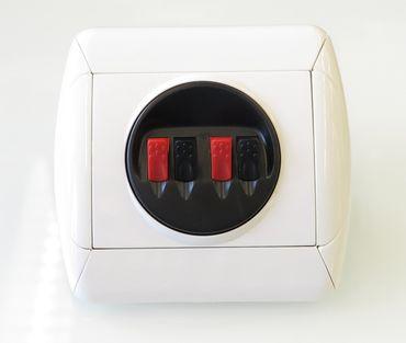 QuettLines Einbaudose für Lautsprecherkabel bis 4qmm – Bild 1