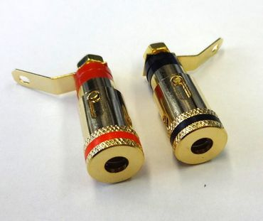 SinnOxx® Push Polklemme vergoldet – Bild 1