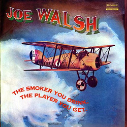 Joe Walsh: The Smoker You Drink, The Player You Get - 200gramm VINYL-LP - Acoustic Sounds