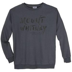 Ahorn Sportswear Sweatshirt grau Schriftprint XXL