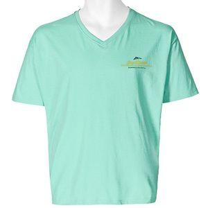 Greyes by Allsize V-Neck T-Shirt hellgrün Joey