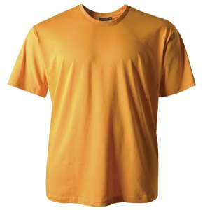 T-Shirt maisgelb Erwin Redfield
