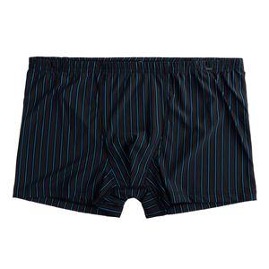 Jockey Pant schwarz-blau-grau gestreift in Übergröße