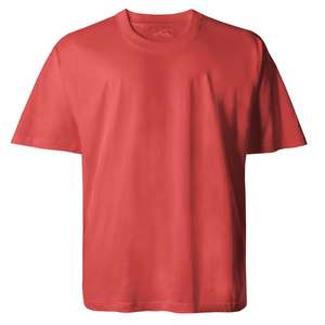 Basic T-Shirt in terracotta von Lucky Star