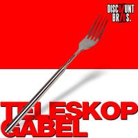 TELESKOP GABEL ausziehbar Fondue Grillen 22-64cm