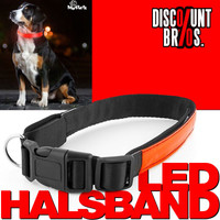 MY PET EZ LED-Hundehalsband