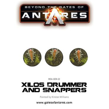 Xilos Drummer and Snappers – Bild 4