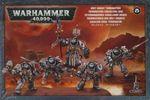 Grey Knights Paladin Squad 001