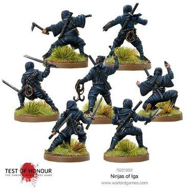 Test of Honour Ninja of Iga 28mm – Bild 3