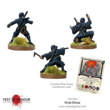 Test of Honour Ninja Set 1 28mm – Bild 2