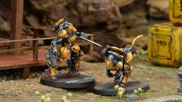 Yu Jing Su-Jian Immediate Action Unit – Bild 4