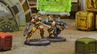 Yu Jing Su-Jian Immediate Action Unit – Bild 3